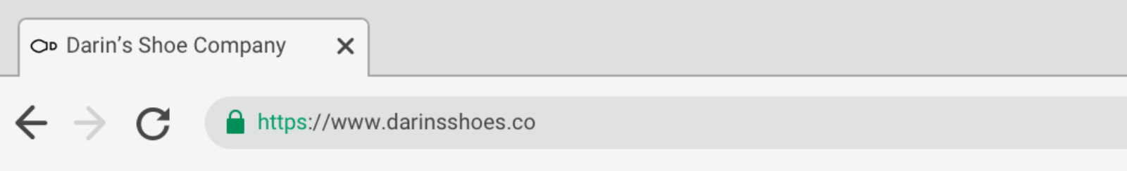 """Browser interface showing one tab labelled """"Darin's Shoe Company"""""""